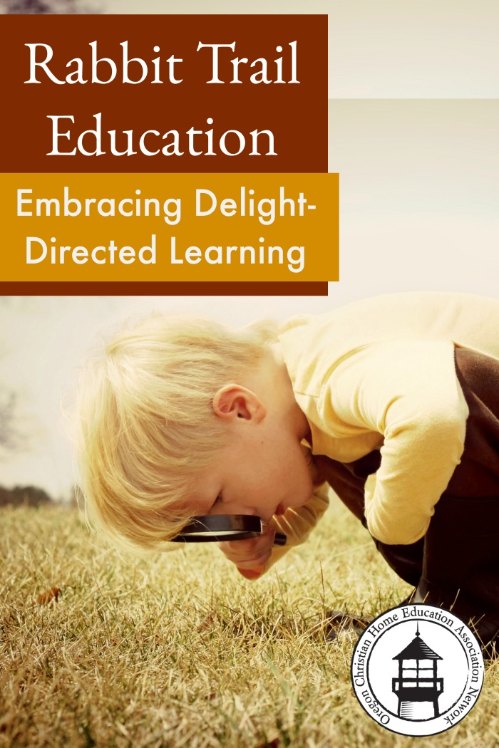 Struggling to stay on task in your homeschool? Embrace delight-directed learning! Great encouragement for exploring in your lessons.