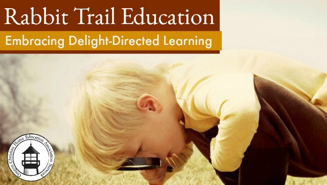 Struggling to stay on task in your homeschool? Begin embracing delight-directed learning! Great encouragement for exploring in your lessons.