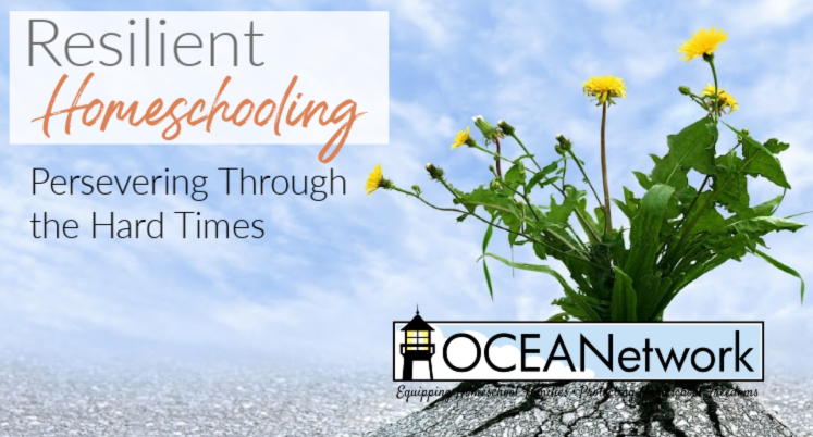 Resilient Homeschooling: Persevering Through the Hard Times