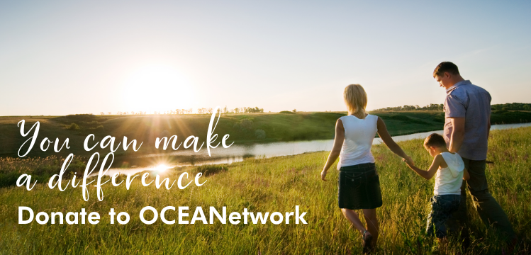 OCEANetwork 2020 Year-End Letter