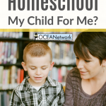 """Are you trying to find a way to homeschool while working full time or during challenging seasons? Considering hiring a """"homeschool teacher"""" or someone to help? Looking into Oregon homeschool pods or private teachers? Here are important things you need to know before you hire someone to homeschool your child!"""