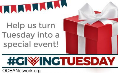 Support OCEANetwork on Giving Tuesday!